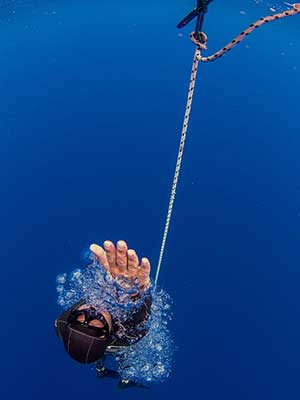 photo of free diver with fish
